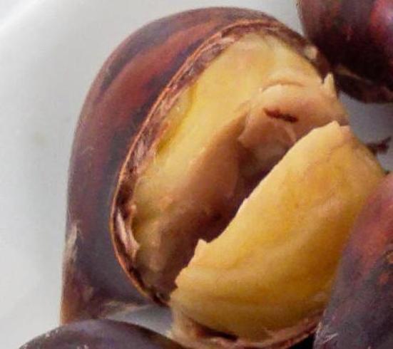 Chestnuts-detail.jpeg