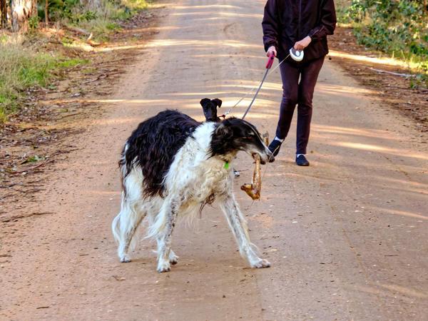 Nikolai-and-kangaroo-bone-6.jpeg