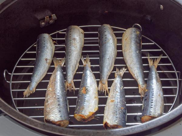 Sardines-1.jpeg