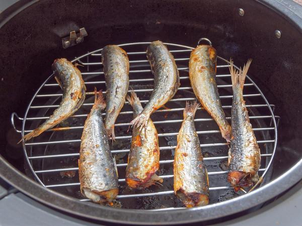 Sardines-2.jpeg