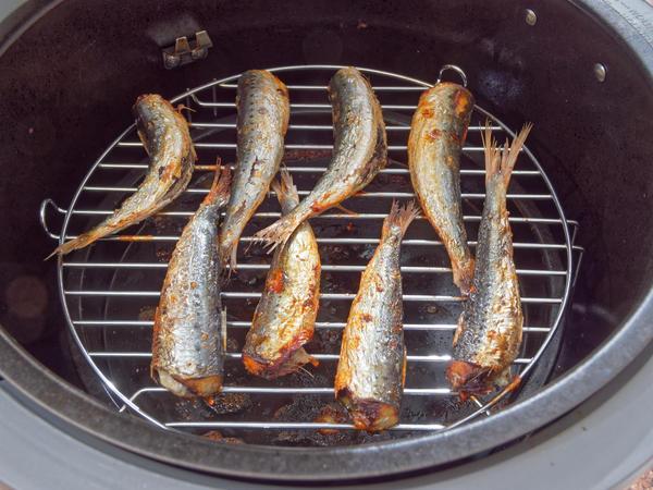Sardines-3.jpeg