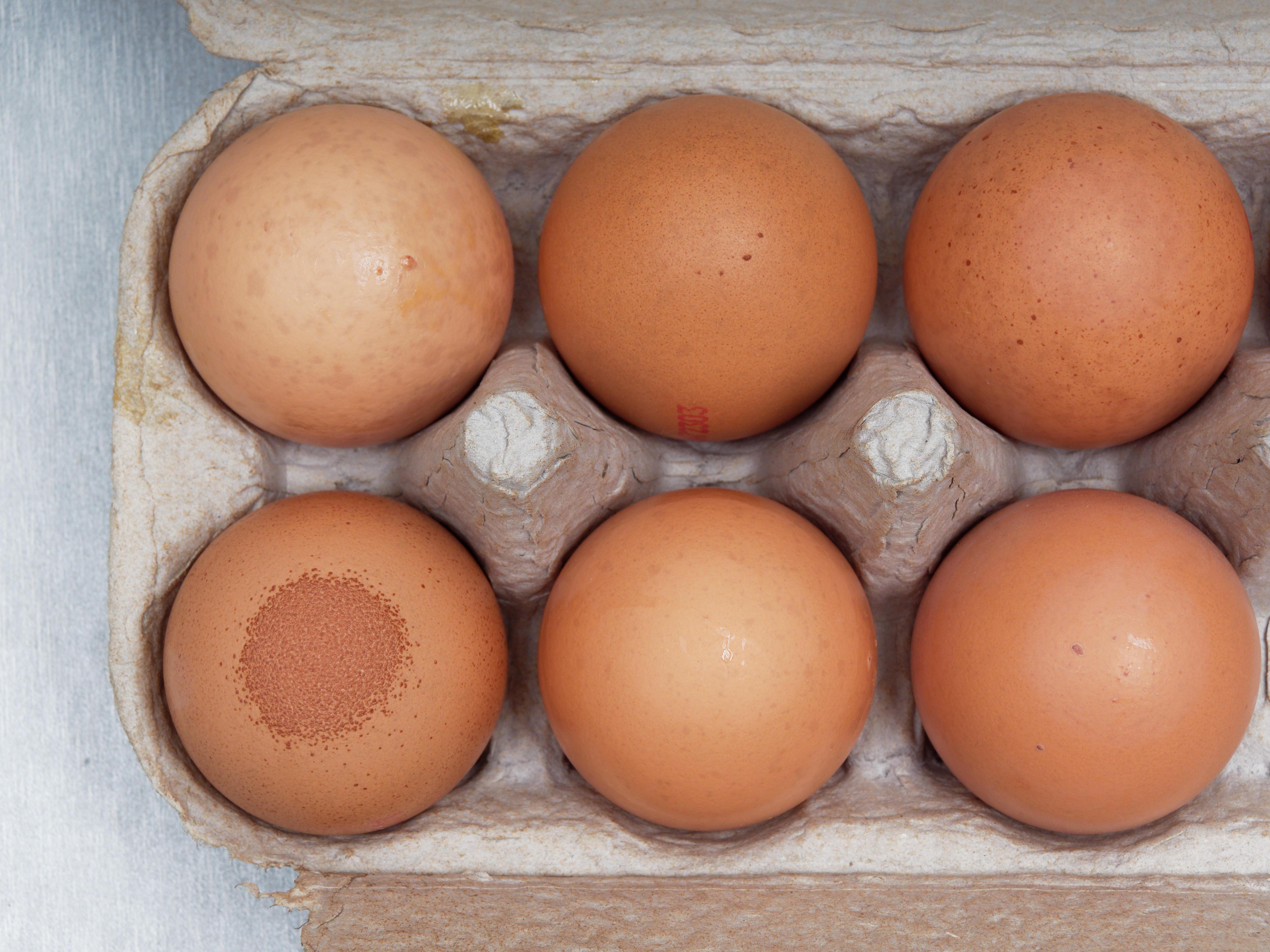 Speckled-egg-1.jpeg