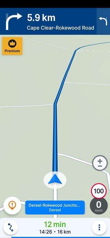 Sygic-map.jpeg