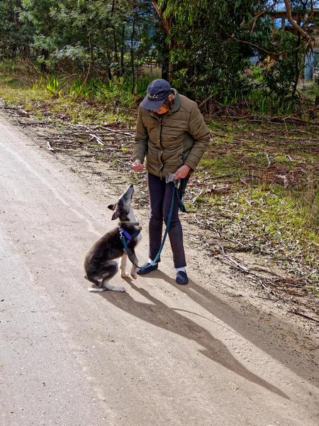 Walking-Larissa-14.jpeg