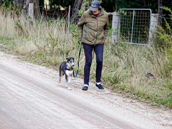 Walking-Larissa-17.jpeg