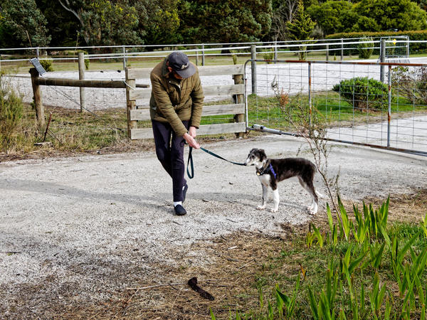 Walking-Larissa-6.jpeg
