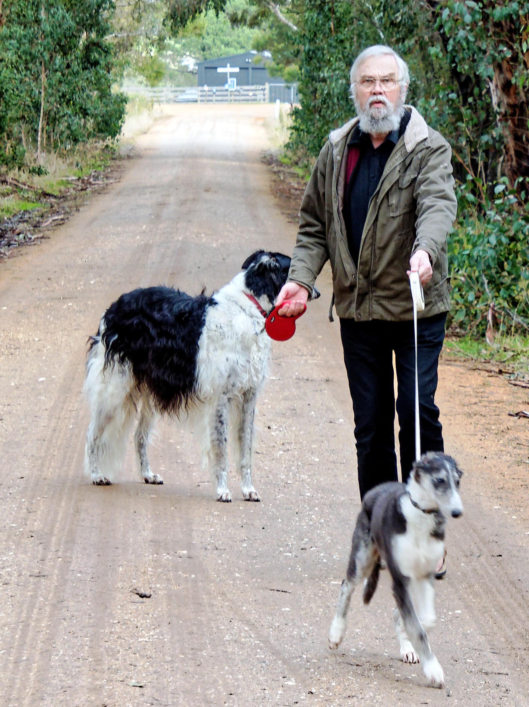 Walking-dogs-5-detail.jpeg