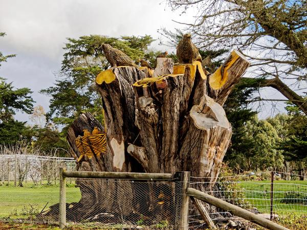 Tree-carving-5.jpeg
