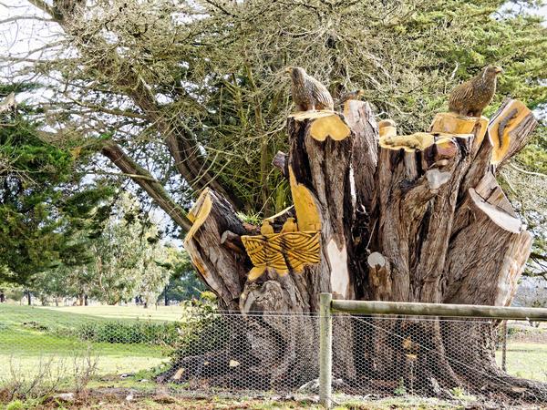 Tree-carving-9.jpeg
