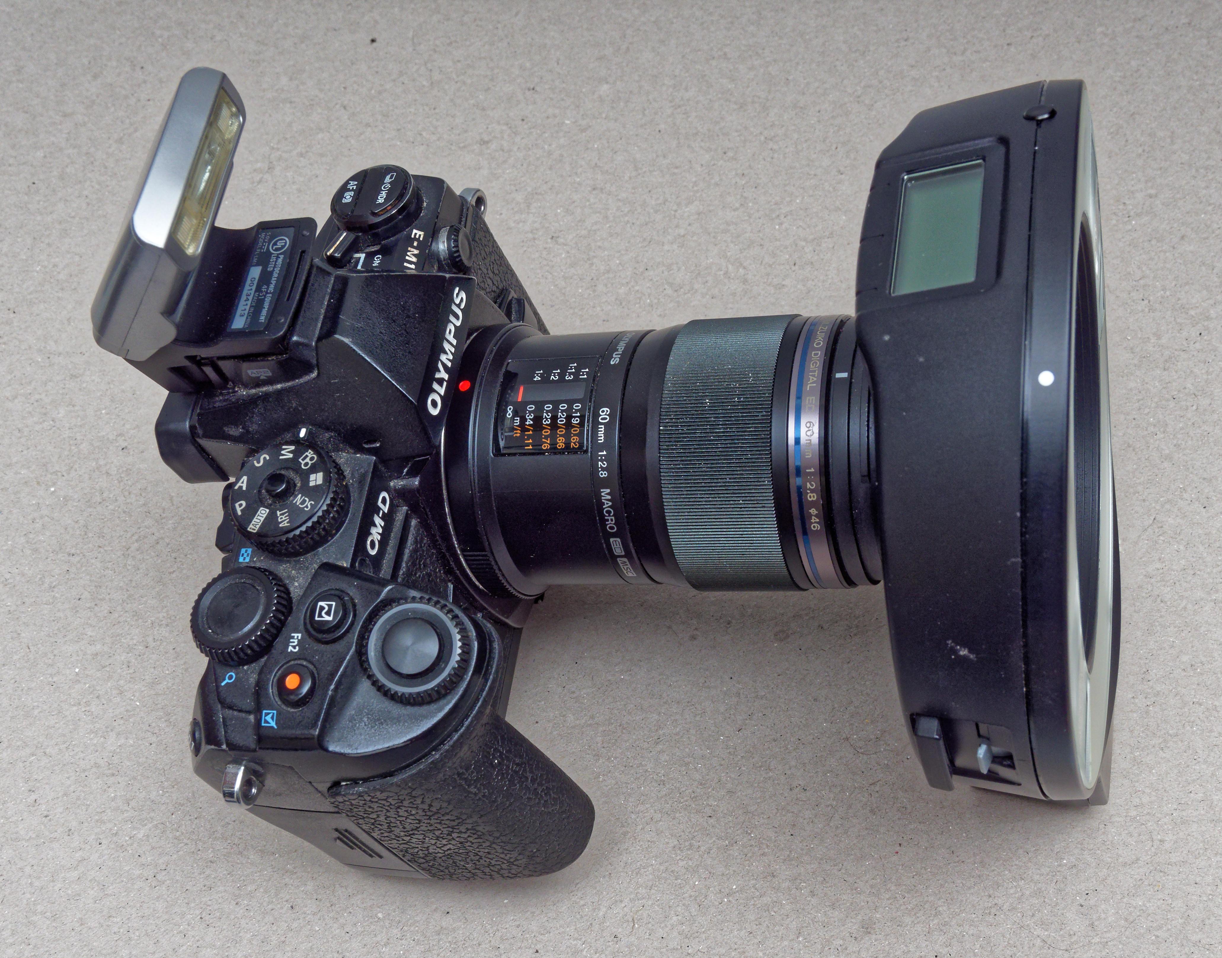 E-M1-5.jpeg