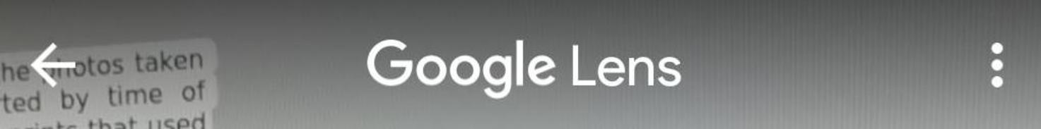 Google-lens-1-detail-2.jpeg