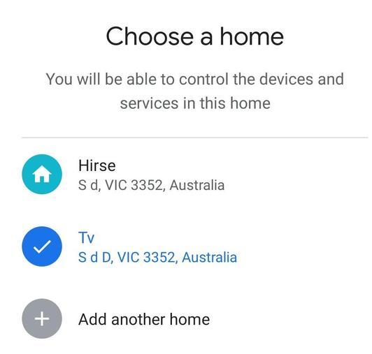 Google-home-4-detail.jpeg