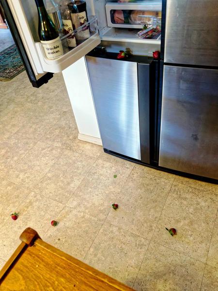 Strawberry-attack-2.jpeg