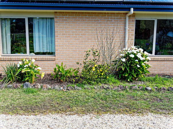 North-garden-1.jpeg
