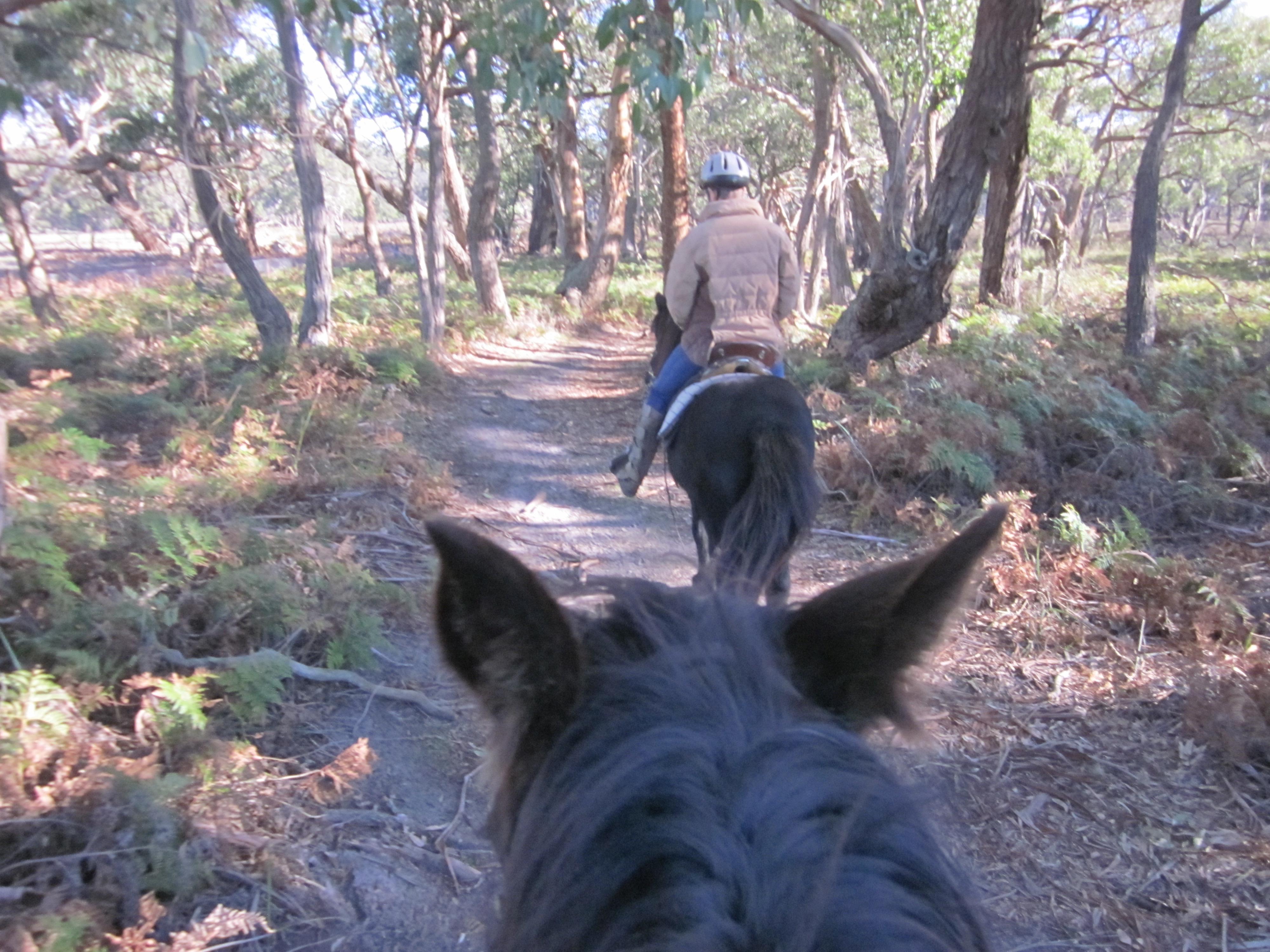 on-the-trails-4.jpeg
