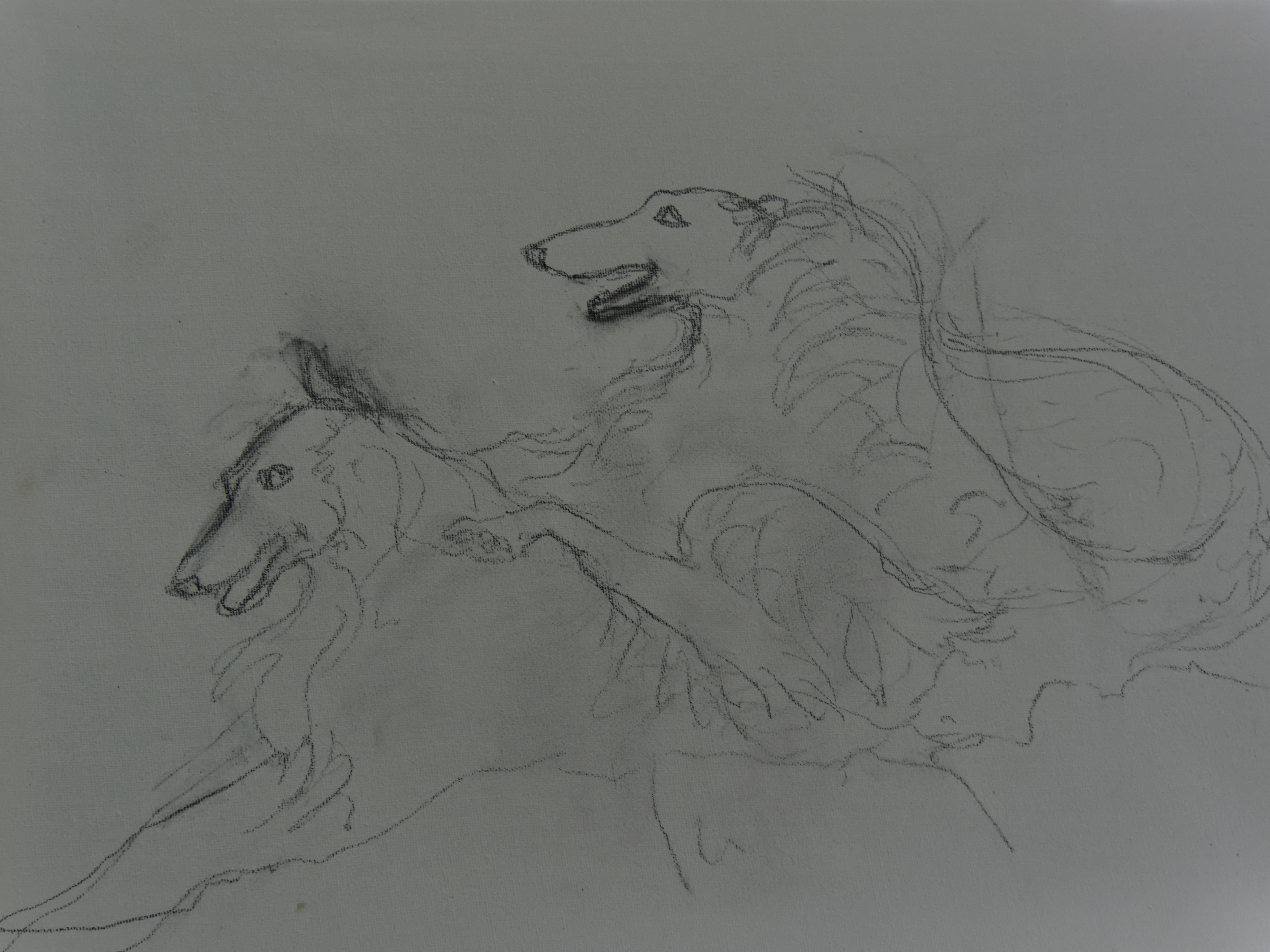 This should be drawing-borzoi-1.jpeg.  Is it missing?