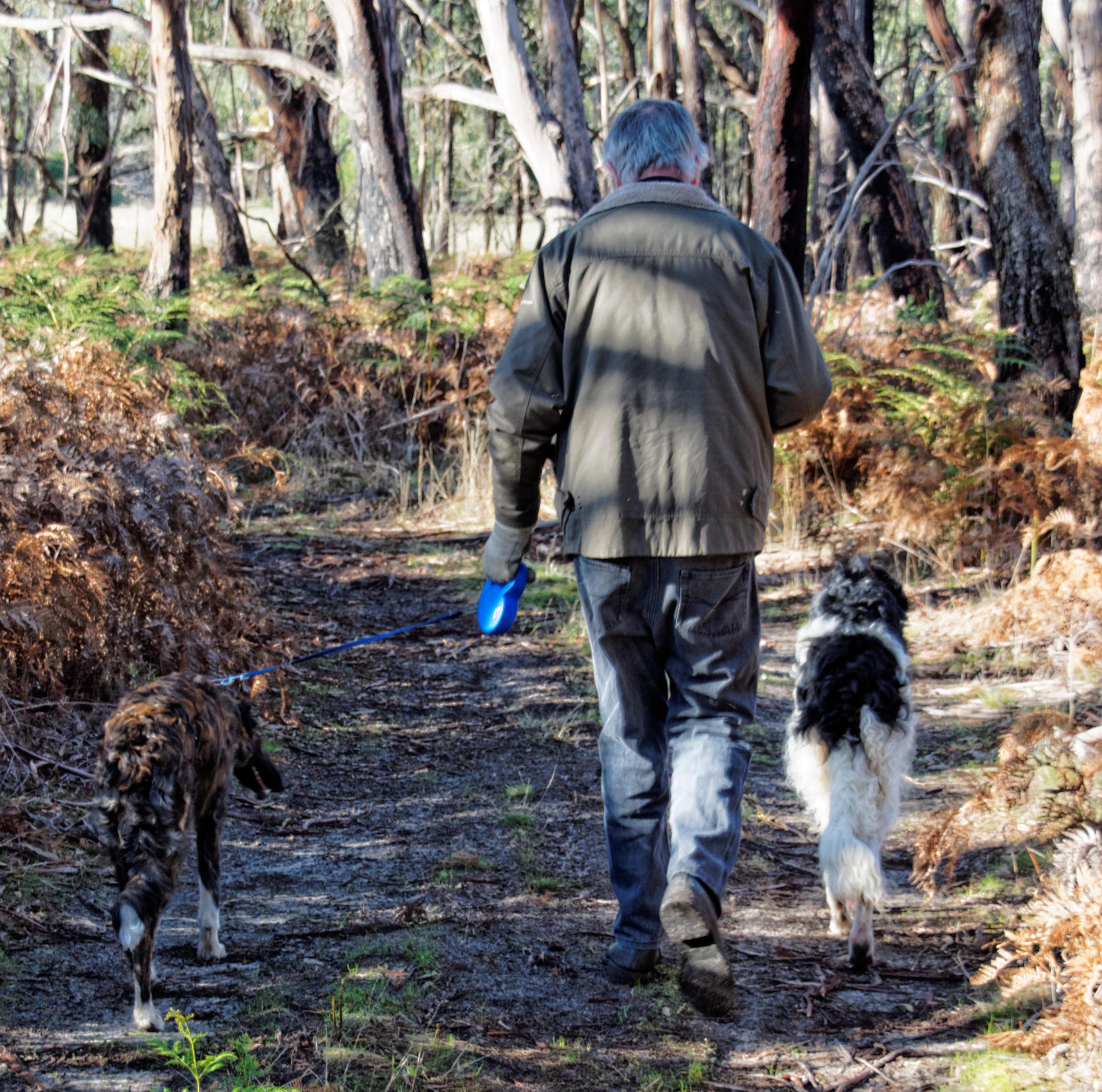 Greg-and-dogs-5.jpeg