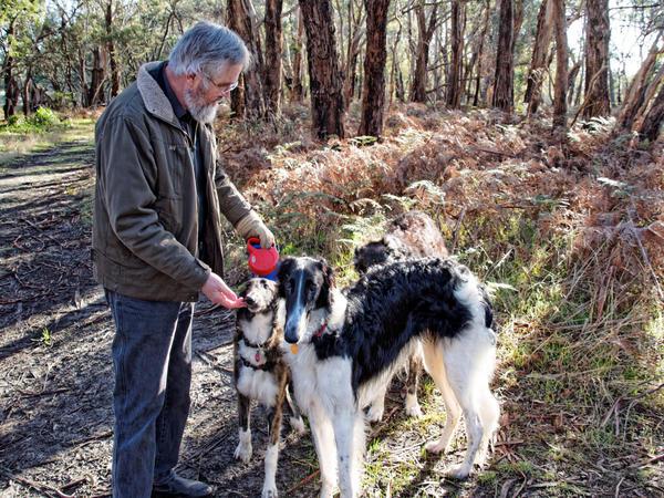 Greg-and-dogs-3.jpeg