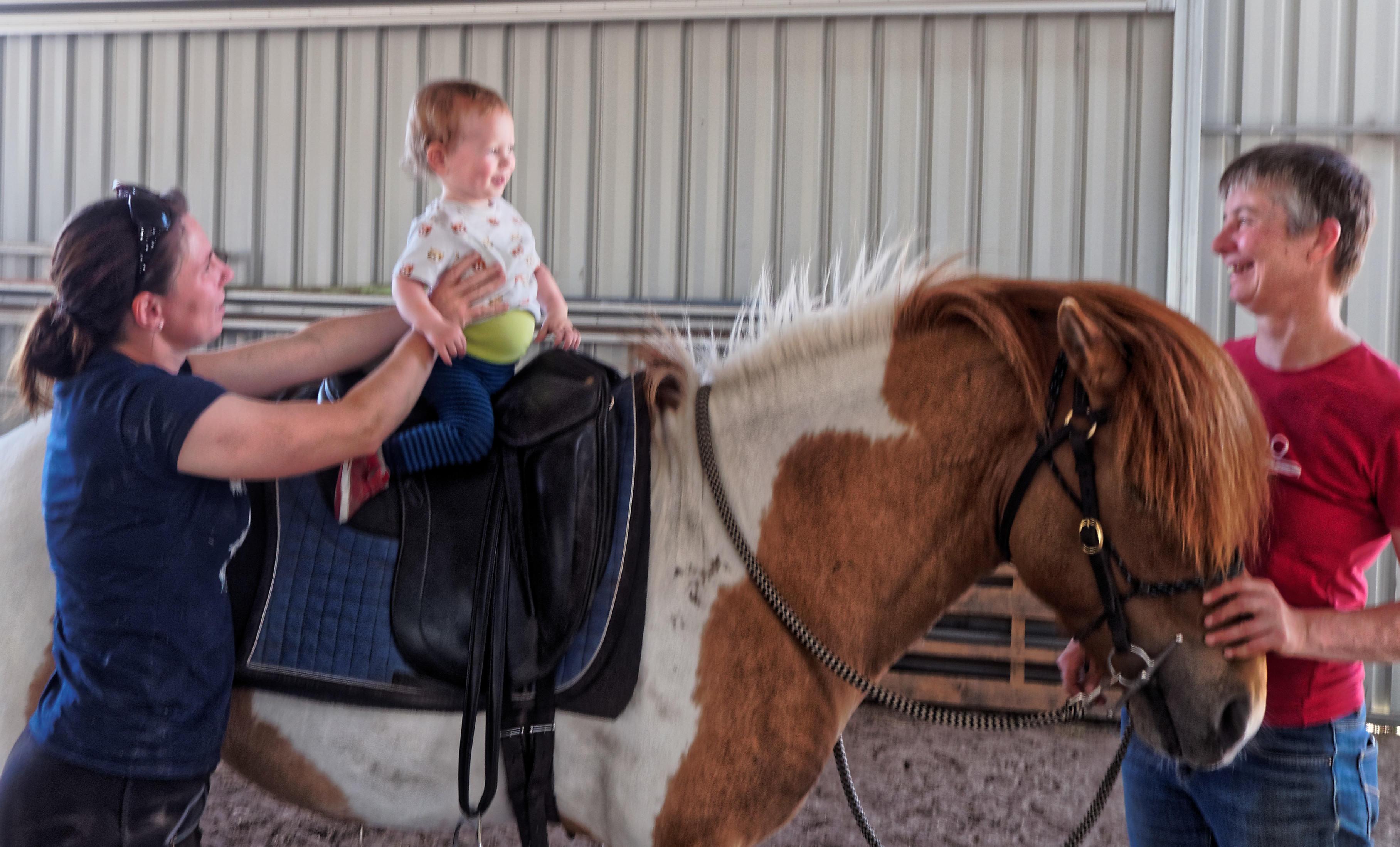 pony-ride-3.jpeg