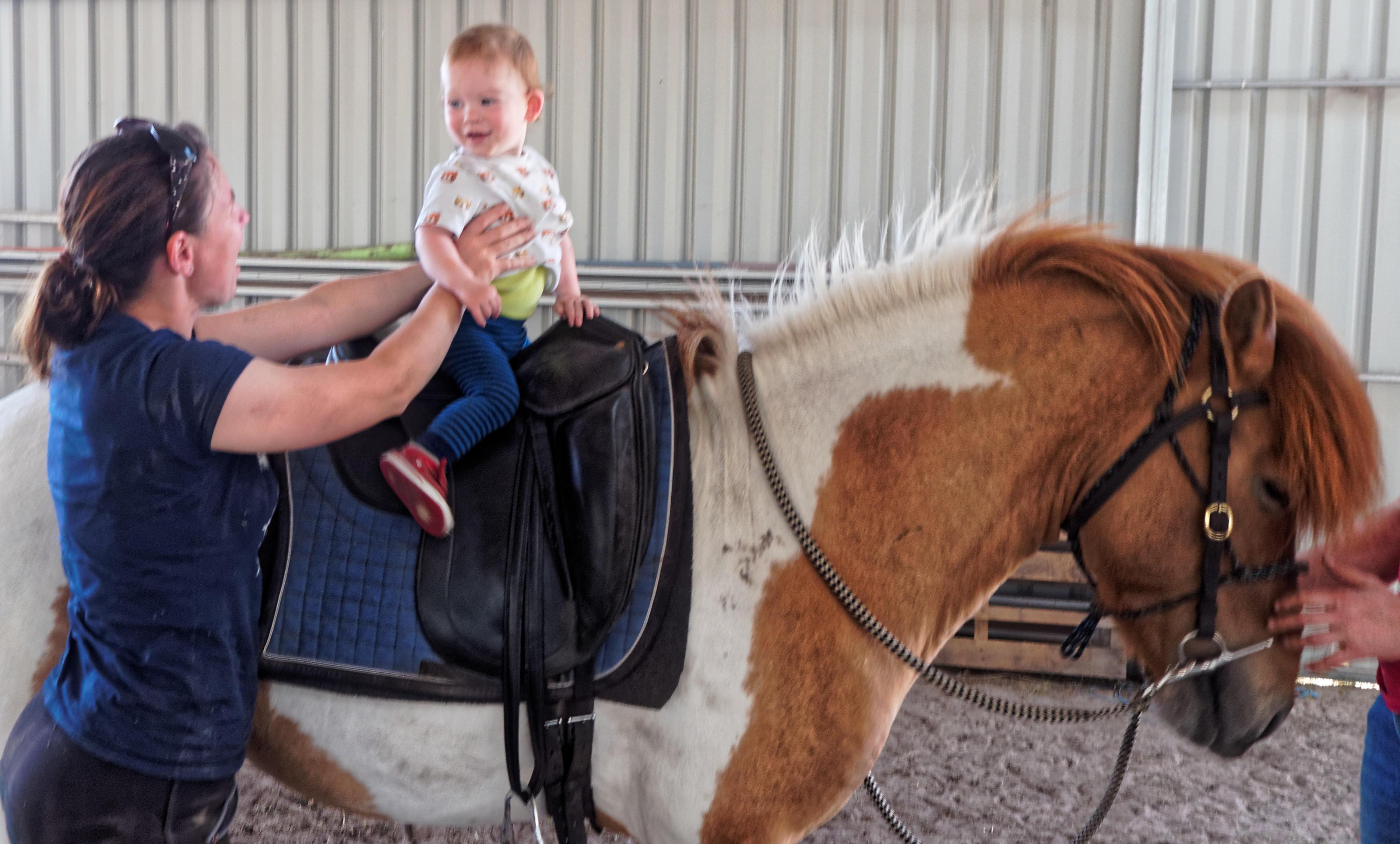 pony-ride-5.jpeg