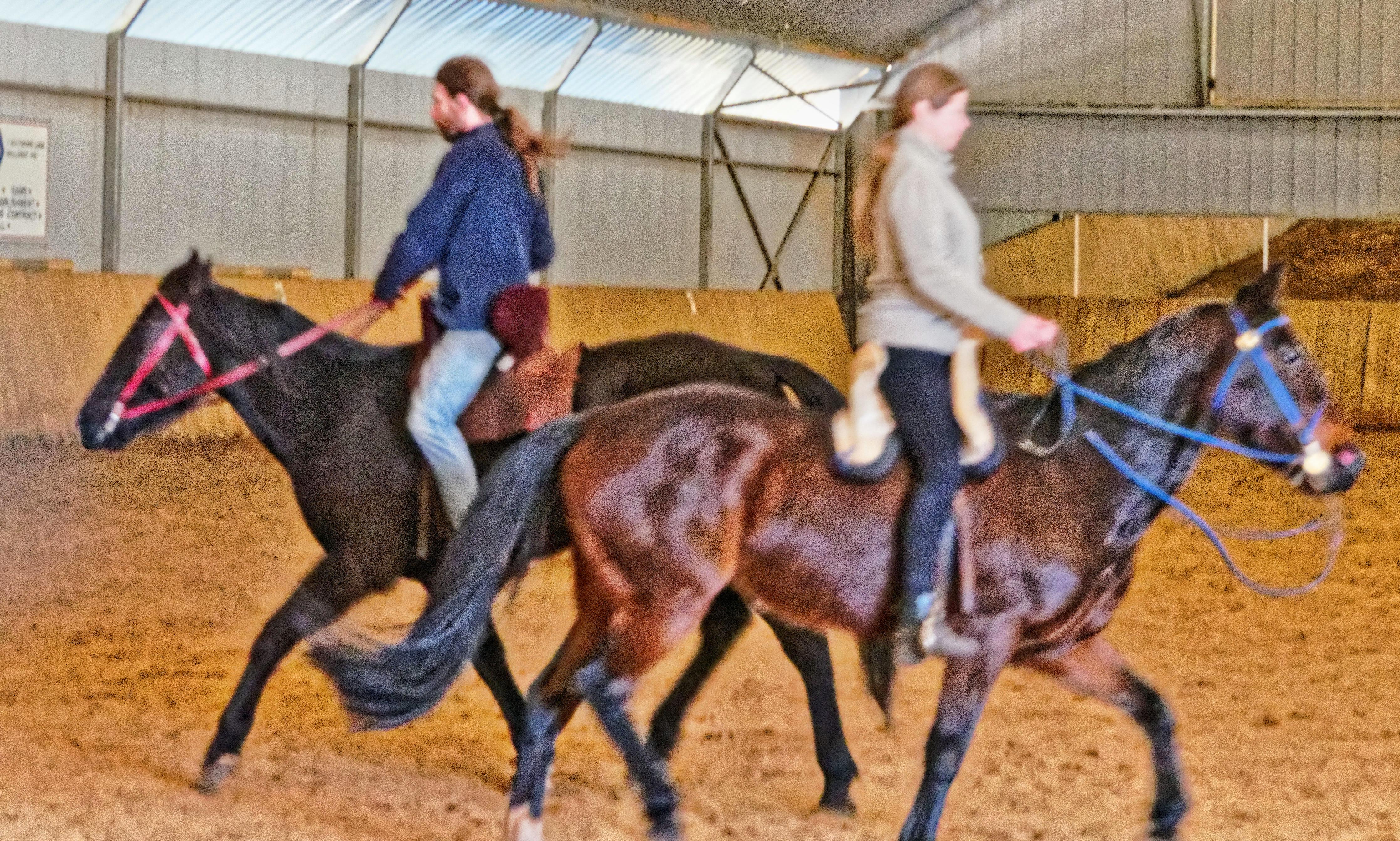 War-saddles-10.jpeg