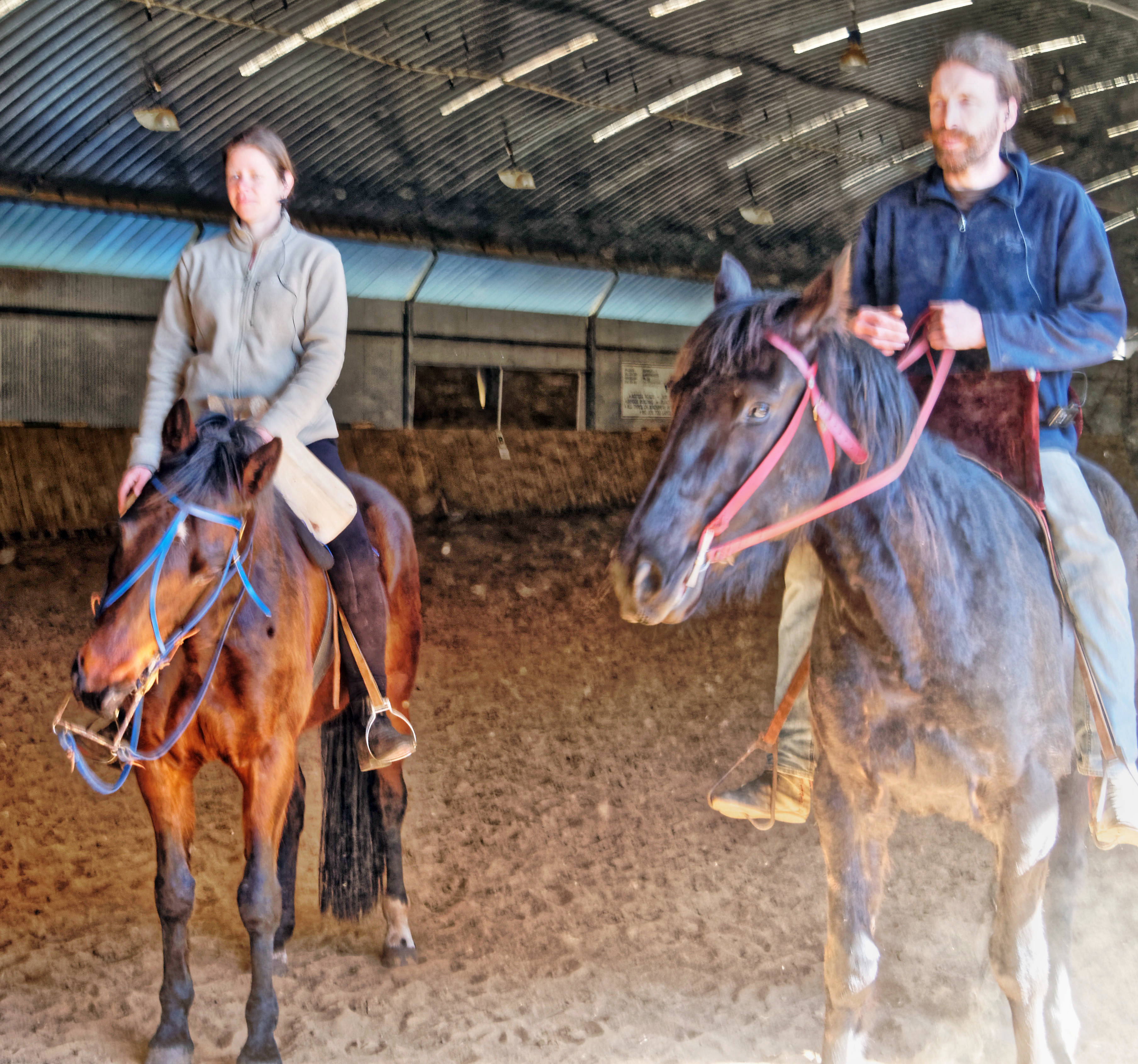 War-saddles-3.jpeg
