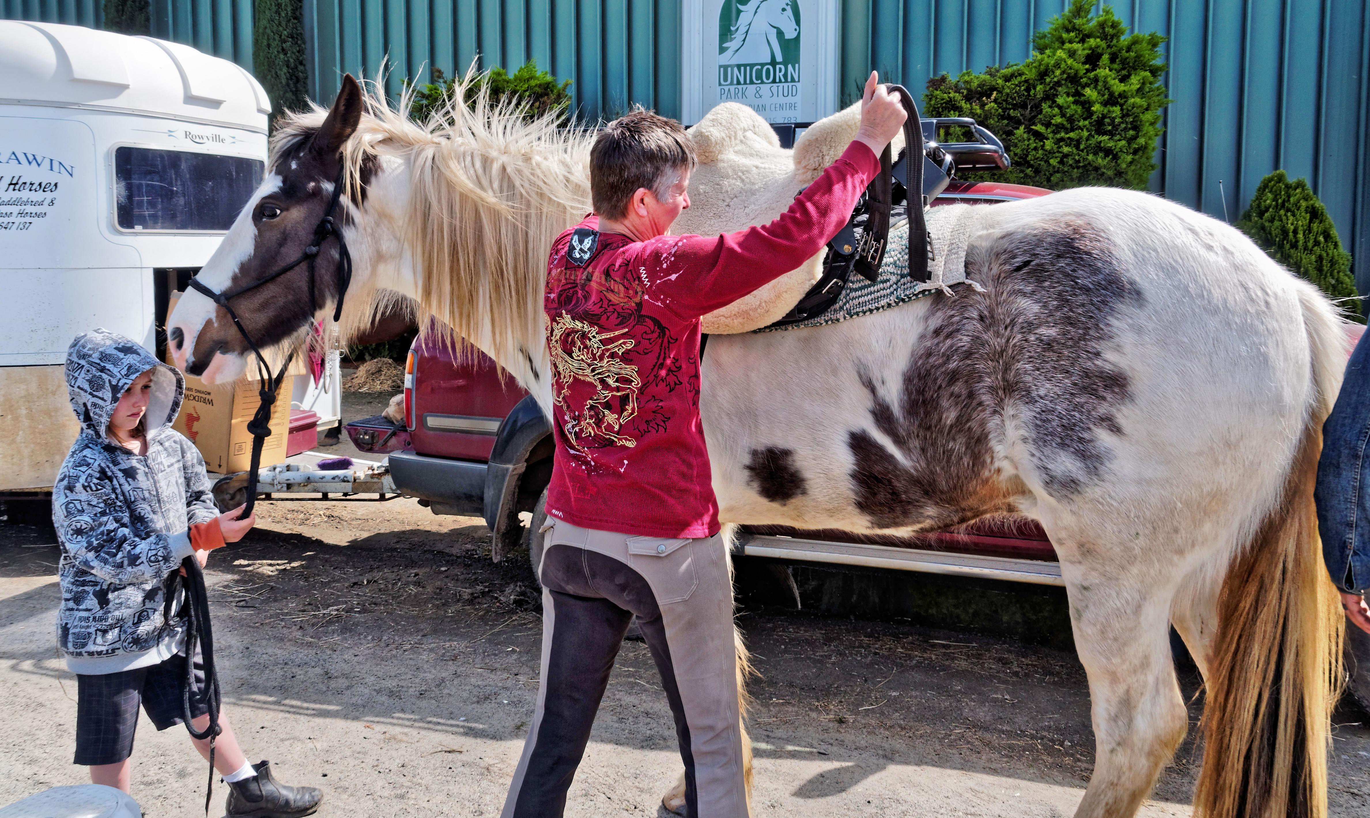saddle-fitting-1.jpeg