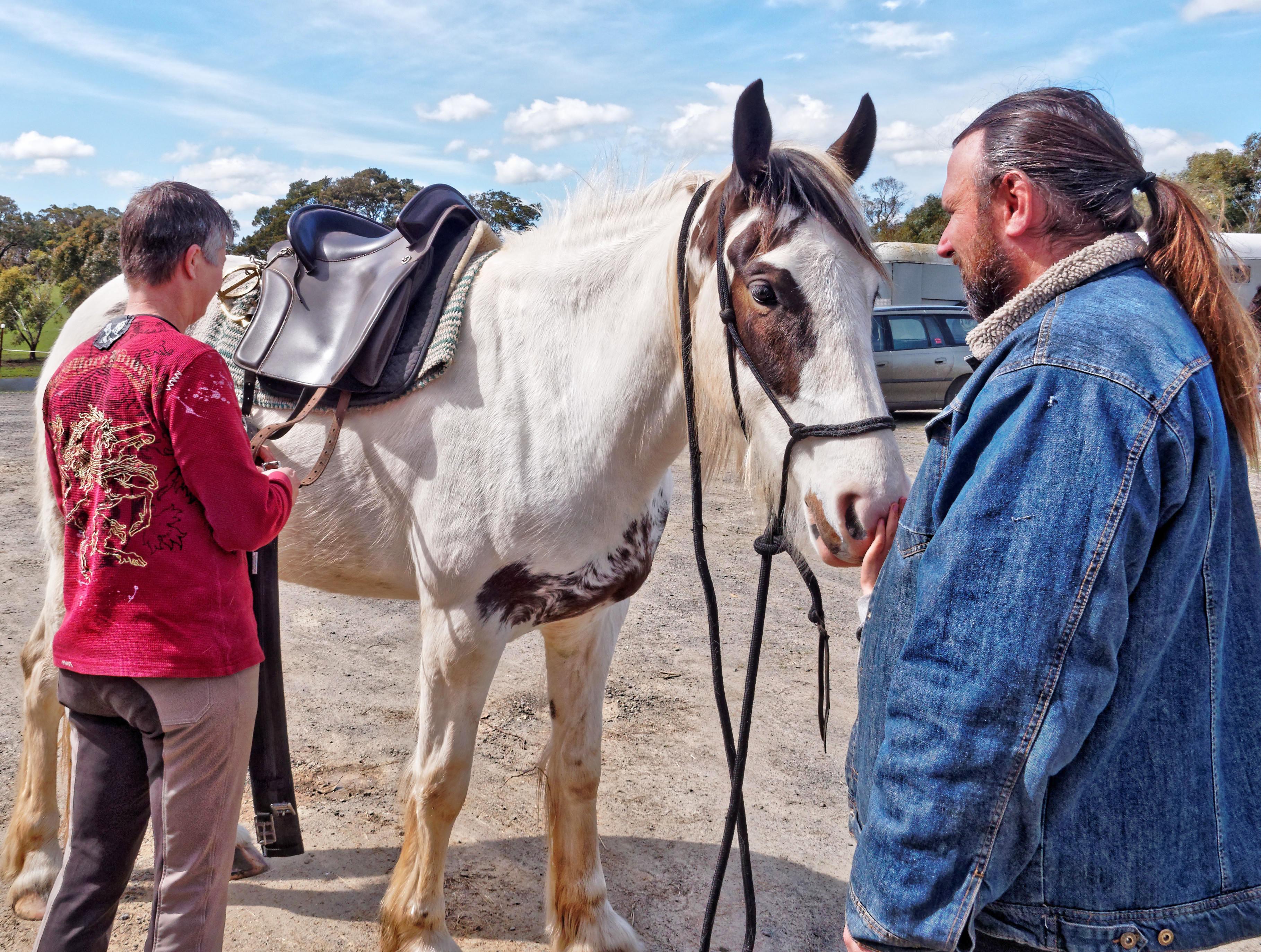 saddle-fitting-10.jpeg