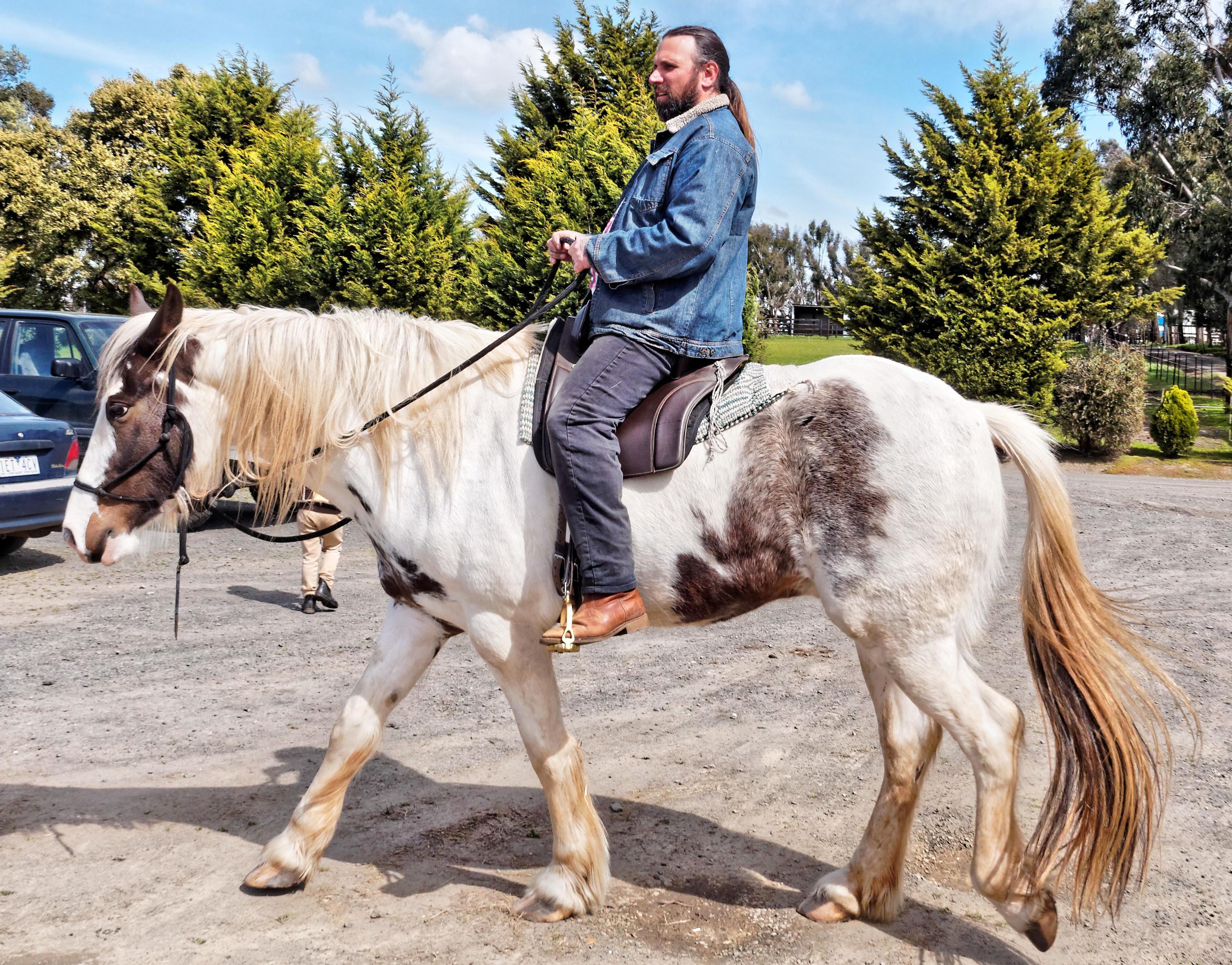saddle-fitting-14.jpeg