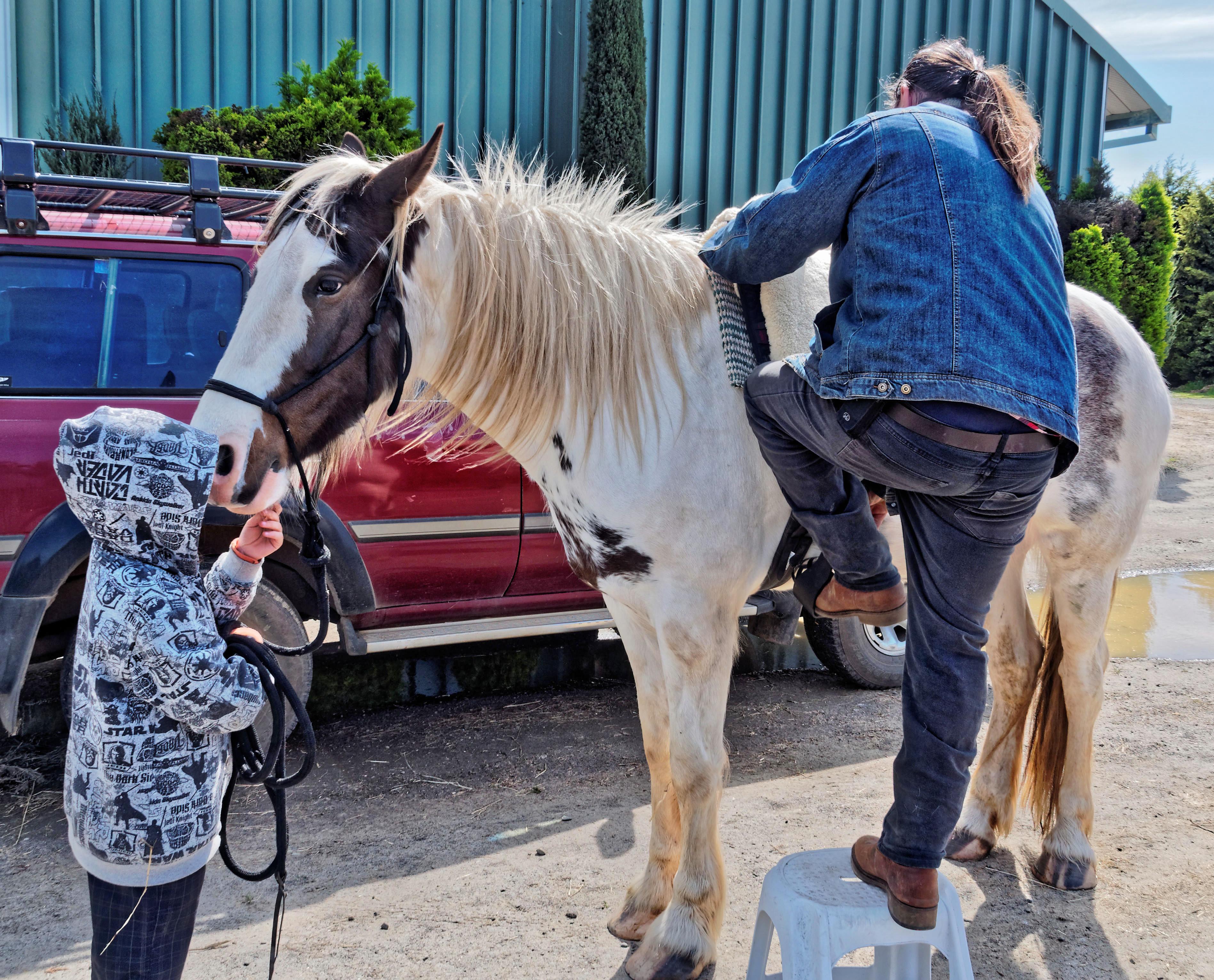 saddle-fitting-4.jpeg