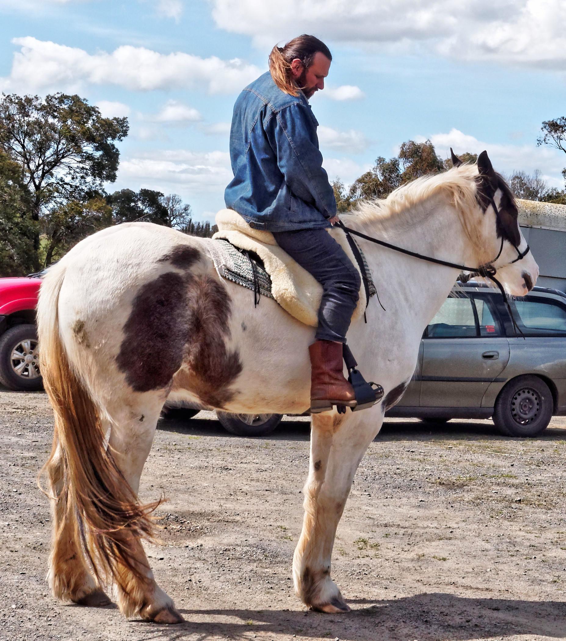 saddle-fitting-8.jpeg