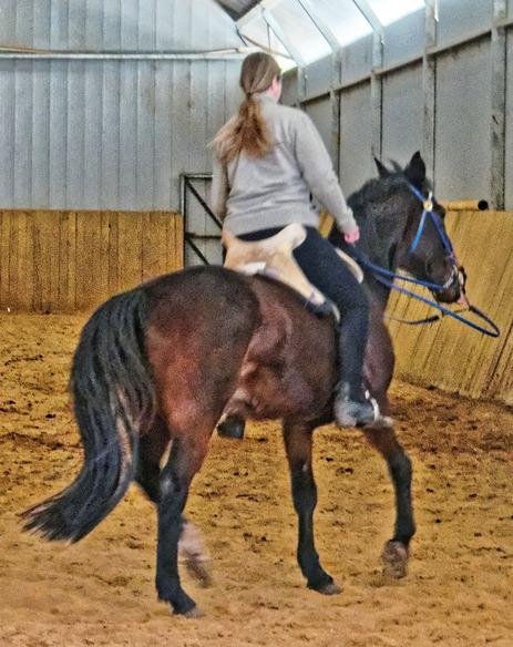 War-saddles-11.jpeg