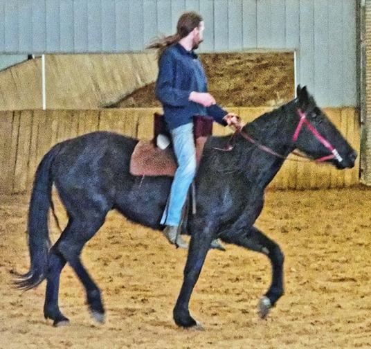 War-saddles-12.jpeg