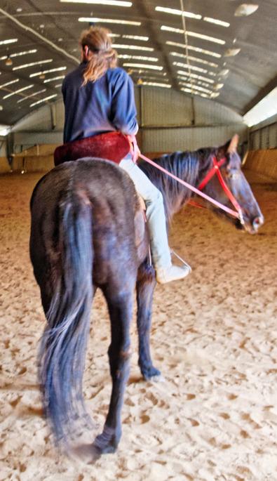 War-saddles-6.jpeg