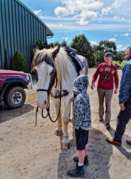 saddle-fitting-11.jpeg