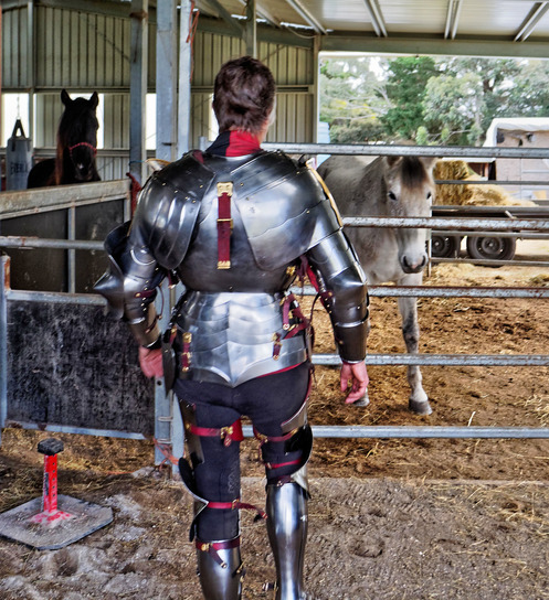 showing-armour-to-horses-1.jpeg