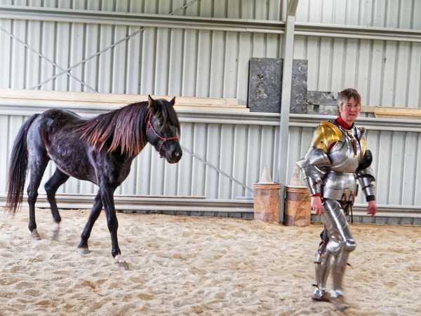 showing-armour-to-horses-15.jpeg