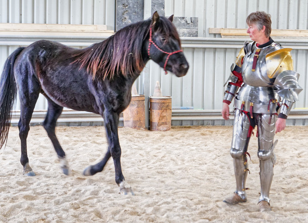 showing-armour-to-horses-16.jpeg