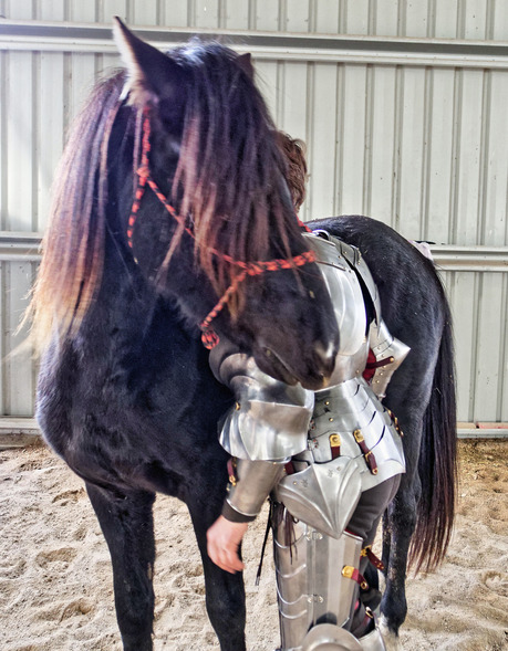 showing-armour-to-horses-20.jpeg