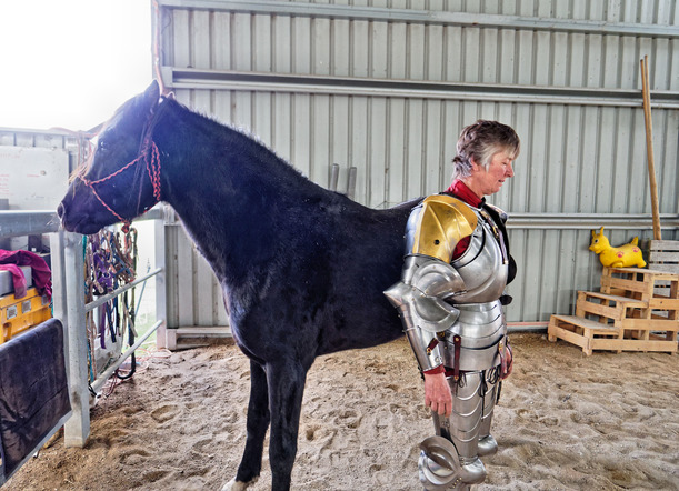showing-armour-to-horses-21.jpeg