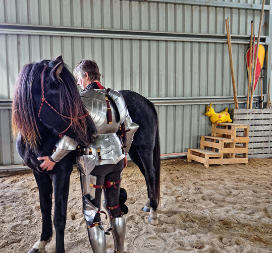 showing-armour-to-horses-23.jpeg