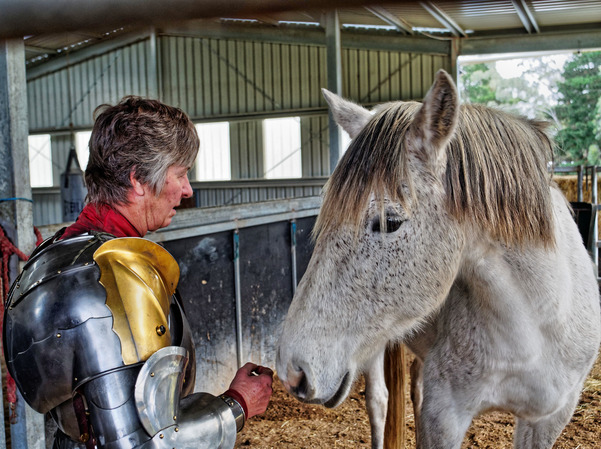 showing-armour-to-horses-3.jpeg