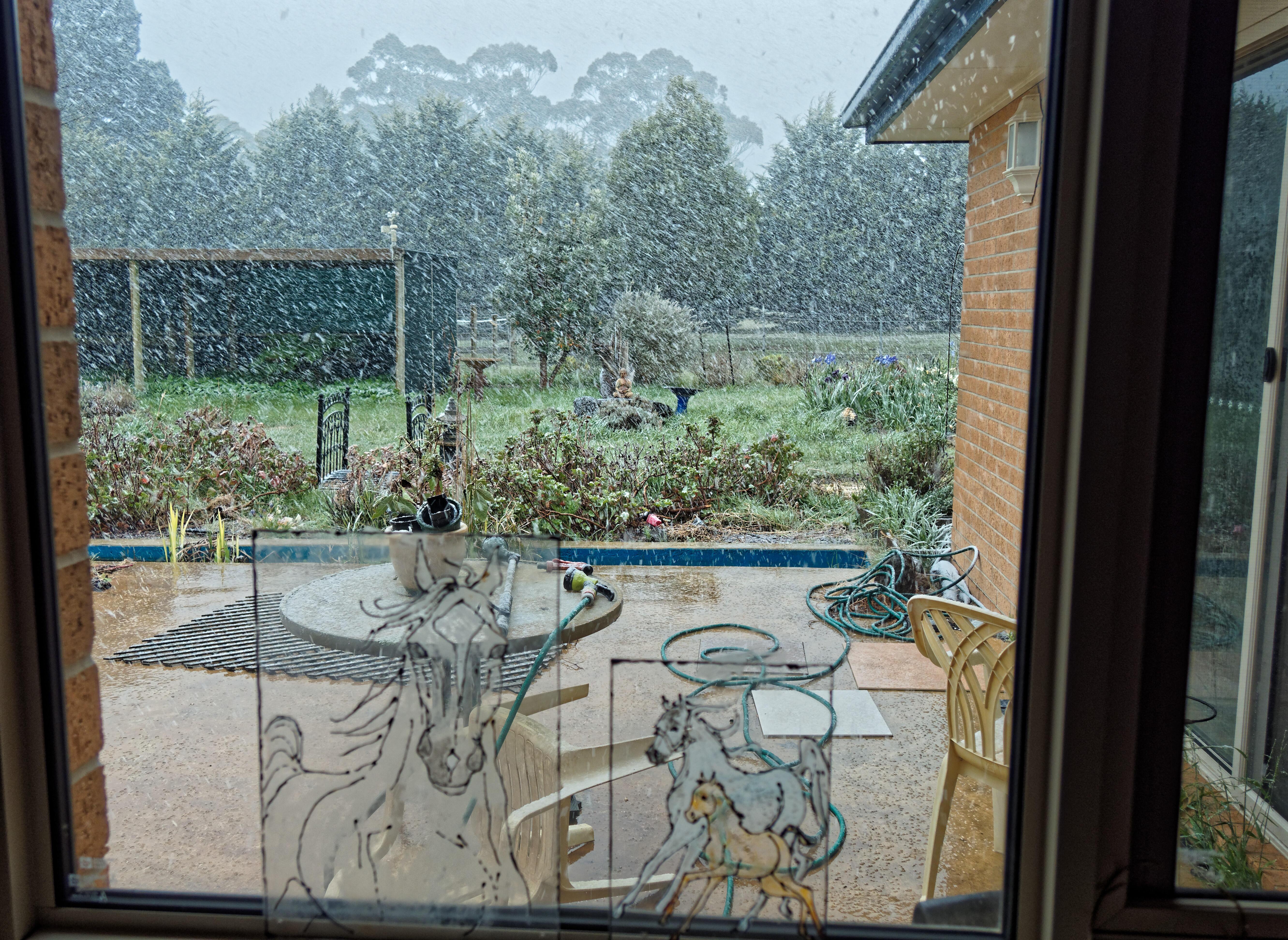 snow-1.jpeg