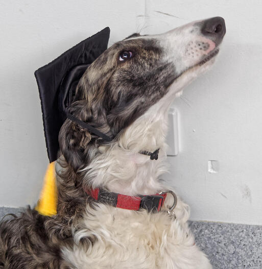 Lena-Graduate-3.jpeg